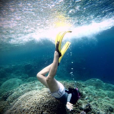 Memasuki Alam Bawah Laut Pulau Menjangan - Bali