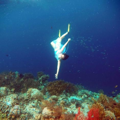 Reaching Menjangan Coral